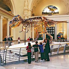 10 Must-See Chicago Attractions for Kids