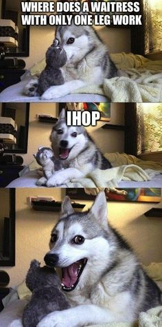 The Best Worst Jokes From Pun Husky
