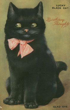 "Lucky Black Cat ""Glad Eye"" - vintage birthday postcard"