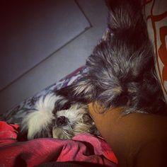 ... no me alcanzan los brazos para tanto amor, estos chamacos son un verdadero peligro amoroso! Buenas noches de parte de la familia Peligrosa! #nightnight #los