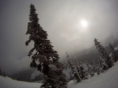 One more from Stevens Pass today.  Shot on time-delay with a GoPro Hero.
