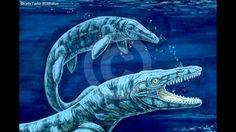 Mosassauro Conhecendo o mundo dos dinossauros com Davi .