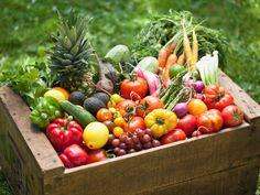FOGLIE: Food&Beverage: il cibo bio vince la sfida dell'e-c...