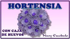 HORTENSIA CON CAJA DE HUEVOS