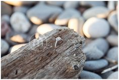 Ted & Danielle ~ Grimsby Engagement » Moments on the Blog
