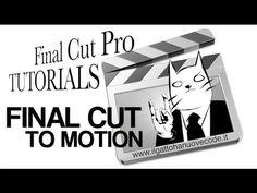 Fcp to Motion - il gatto ha nuove code