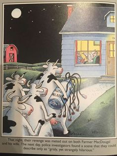 """""""The Far Side"""" by Gary Larson Revenge of the Bovines.it makes you break out into a rash, means of elimination. Far Side Cartoons, Far Side Comics, Funny Cartoons, Funny Comics, Funny Jokes, Hilarious, Funny Sarcasm, Funny Art, The Funny"""
