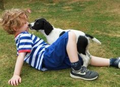 5 Tips on How to Introduce Your Dog to a New Baby: http://www.dognametags.org/how-to-introduce-dog-to-new-baby