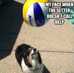 Sorry, sometimes I forget that setting scares the non-setters! Lol #volleyball #sportquotes #volleyballquotes