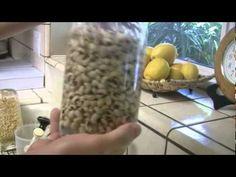 Como hacer germinados - LA VERDAD ETERNA - YouTube Raw Food Recipes, Veggie Recipes, Healthy Recipes, Growing Veggies, Vegan Cheese, Superfoods, How To Dry Basil, Vegan Vegetarian, Sprouts