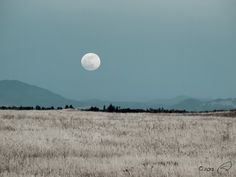 Image of the May 2013 Rising Supermoon north of Fresno, CA