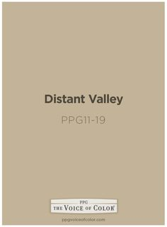 Distant Valley paint color by PPG Voice of Color is inspired by an Coastal Haven themed vacation Up North. #colorinspiration #paintcolor