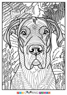 29 Ideas Simple Art For Adults Coloring Sheets Horse Coloring Pages, Dog Coloring Page, Free Adult Coloring Pages, Colouring Pages, Coloring For Kids, Coloring Sheets, Coloring Books, Mandalas Painting, Mandalas Drawing
