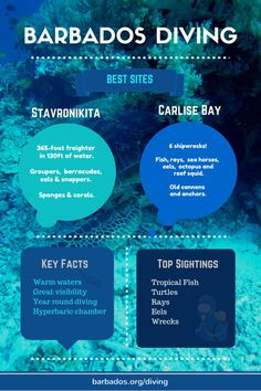 Experience the amazing wonder of scuba diving in #Barbados! http://barbados.org/diveops.htm