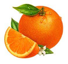 Orange, Wedge, and Blossom