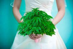 Ahora los amantes de la marihuana tienen un lugar para unirse en Las Vegas.