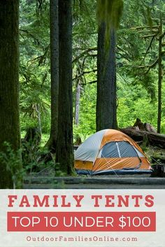 The best family camping tent under $100 should still give you plenty of room, shed rain, handle some wind, and packable for car camping. We have compiled a list of the top 10 family camping tents on the market that are under $100 because we know you don't Best Family Camping Tents, Tent Camping, Camping Hacks, Get Outdoors, Outdoor Recreation, Outdoor Gear, The 100, Shed, Adventure