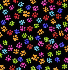 Rainbow Paw Print Wallpaper - Bing images