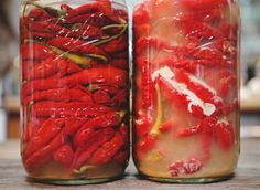 Your ferment can be contaminated in a number of ways. One of the most common visible contaminations is a white, cloudy substance called Kahm Yeast. While Kahm y Fermented Hot Sauce Recipe, Hot Sauce Recipes, Fermentation Recipes, Canning Recipes, Baby Food Recipes, Whole Food Recipes, Food Baby, Shrub Recipe, Sweet And Spicy Sauce