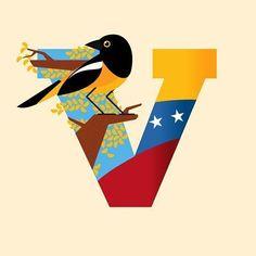 Venezuela Flag, Honduras Travel, Protest Art, Denim Art, Travel Tags, Hispanic Heritage, Barbie, Education Humor, Silhouette Cameo Projects