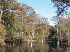 Manatee State Park
