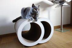 Cat-on Audit. Katten zijn gek op karton en scherpen er erg graag hun nagels aan!