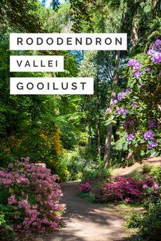 Travel Advice, Travel Tips, Hello Summer, Dream Garden, Netherlands, Holland, The Good Place, Travel Inspiration, Travel Destinations