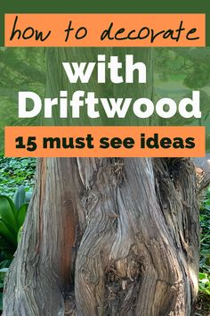 Get inspired by these driftwood decorations and DIY one today. Rustic Outdoor Benches, Diy Rack, Old Mirrors, Picture Holders, Driftwood Crafts, Unique Wall Art, Do It Yourself Home, Eclectic Decor, Diy Wall Decor