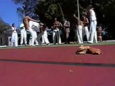 Capoeira Mestres Onça Tigre, Dom Ivan, Polêmico, e Boca Senzala: Embaixa...