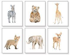 Baby Animal Nursery Art Baby Animal Prints. by JamesRiverStudios