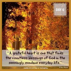 """A grateful heart is one that finds the countless blessings of God in the seemingly mundane everyday life."""