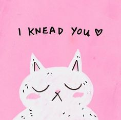 I Knead You love love quotes quote pink cat kitty funny quote humor cat quotes