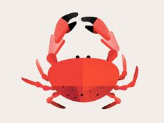 Quite like the colour palette on this crab, and it's an interesting slightly rounder shape idea. Crab Illustration, Digital Illustration, Stencil Painting, Crab Painting, Reading Rainbow, Pretty Designs, Graphic Design Posters, Fish Art, Wall Collage