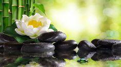 Relaxing Piano Music: Soft Sleep Music, Water Sounds, Meditation Music, Relaxing Music ★102 - YouTube