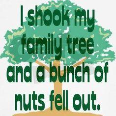 Okay, seriously...everyone has nuts in their family tree.  HAHA!