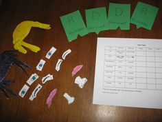 genetics activities #genetics #homeschool
