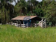 Fazenda nova Xavantina MT 640 hectares toda formada, com várias Divisões de pastos, todas ligadas nas aguadas e no Curral, 38 km de Nova Xavantina, todo km de asfalto, rio, cachoeira, muito boa de água. aceita proposta.Falar com Laesse Junior corretor de imóveis creci 22395 Fones: (62) 99245-6963 whatsapp / 98214-9218 ou www.candidoeoliveira.com.br