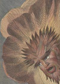 Illustrations from Der Orchideengarten, the World's First Fantasy... - 50 Watts