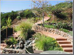 Hillside path, gradual steps for garden. sweetbriarlandscapedesign.com