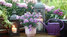 decorar-casa-flores