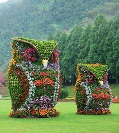 Flower owls.