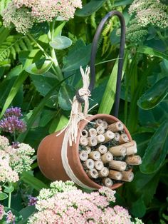 How to Make a Bee Hotel. Bees improve flower pollination How to make a bee hotel Bug Hotel, Mason Bees, Bee House, Birds And The Bees, Bee Friendly, Planting Vegetables, Vegetable Garden, Save The Bees, Garden Projects