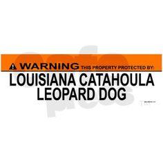 LOUISIANA CATAHOULA LEOPARD DOG Bumper Bumper Sticker on CafePress.com