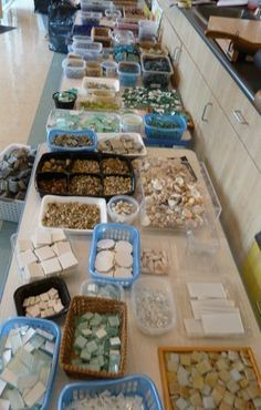 Look at all these tile and glass pebble donations. What a fun invitation for children to come explore, make patterns and create!