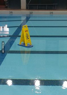 Someone put this out there before we started swim practice...