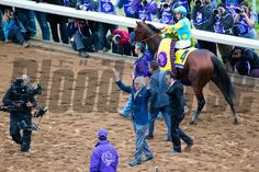 Bob Baffert energized the crowed after American Pharoah with Victor Espinoza up won the Breeders' Cup Classic at Keeneland Race Course in Lexington, Ky. on Saturday October 31, 2015. Photo by Mark Mahan