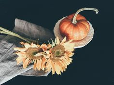 Hope you're not tired of the sunflower pics yet. Got a new iPhone 7 and the camera is amazing. #iPhone7 #sunflowers #fall #colorsoffall #stilllife #jj_still_life #tv_stilllife…