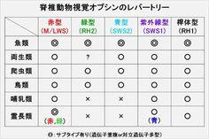 魚の色覚はすごい!:日経ビジネスオンライン
