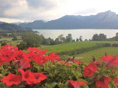In Österreich herrscht Vignettenpflicht und die Maximalgeschwindigkeit auf den Autobahnen ist 130 km/h. Die Vignette kann an der Grenze am Kiosk oder in Tanks Kiosk, Mountains, Nature, Travel, Vignettes, Filling Station, Naturaleza, Trips, Viajes