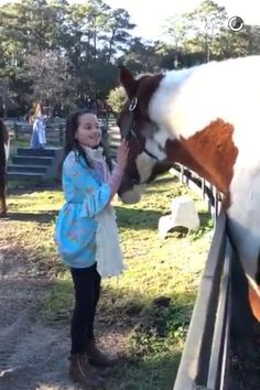 Meeting a horse